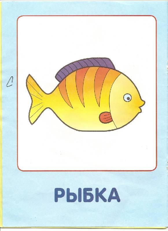 Картинки для малышей до года