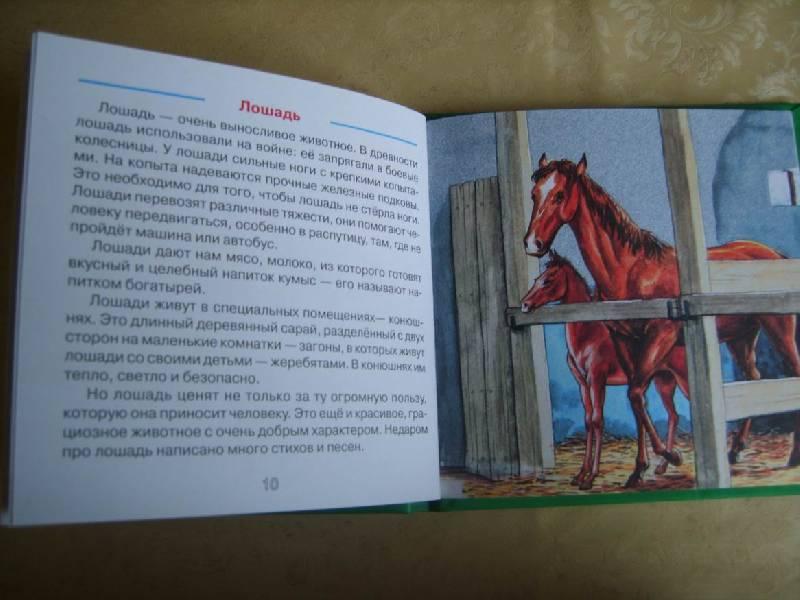 Иллюстрация 1 из 9 для Домашние животные. Веселые уроки - Галина Шалаева | Лабиринт - книги. Источник: Tatka