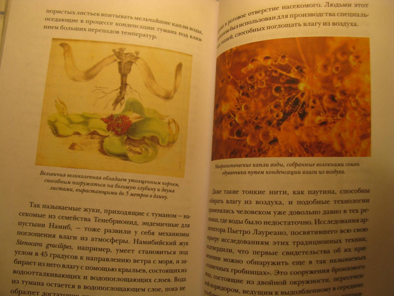 Иллюстрация 12 из 18 для Революция растений. Новый взгляд на интеллект и поведение растений - Стефано Манкузо | Лабиринт - книги. Источник: Абрамова  Мария