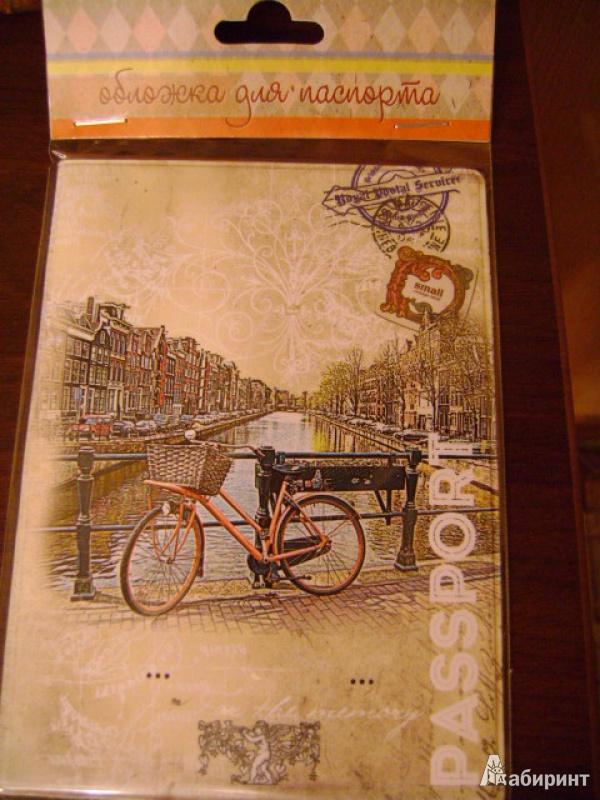 Иллюстрация 5 из 17 для Обложка для паспорта (32401) | Лабиринт - канцтовы. Источник: anchutka