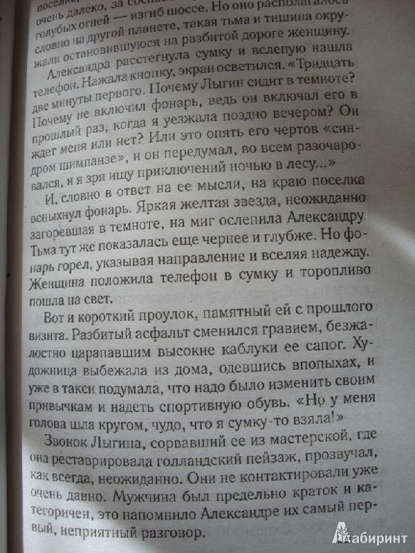 Иллюстрация 14 из 18 для Дом у последнего фонаря - Анна Малышева | Лабиринт - книги. Источник: Иринич  Лариса Павловна