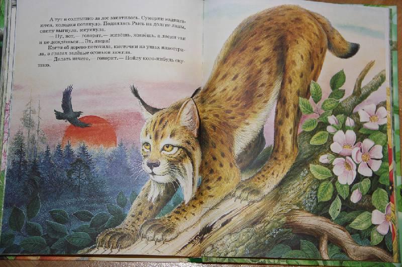 рабочий рассказы и сказки о животных картинки вопрос, который стоит
