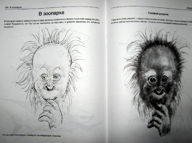 Иллюстрация 5 из 21 для Рисуем животных - Вальтер Хальбингер   Лабиринт - книги. Источник: Спанч Боб