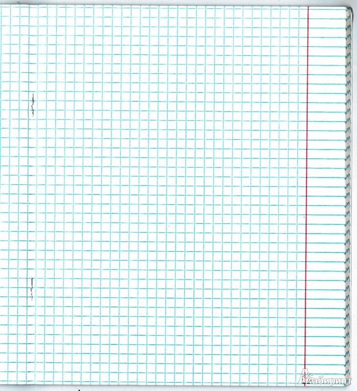 Картинка клетки тетрадь