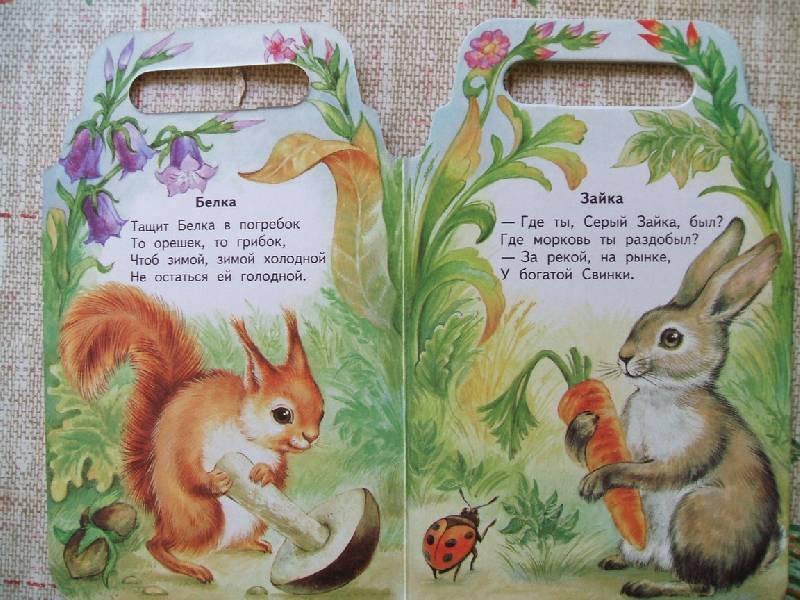 картинки диких животных и стихи знаменит
