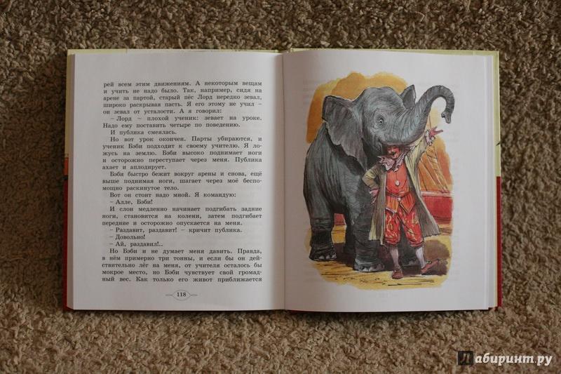 Иллюстрация 23 из 35 для Мои звери - Владимир Дуров | Лабиринт - книги. Источник: дважды