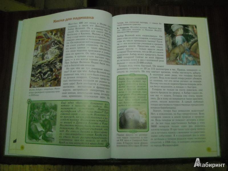 Иллюстрация 48 из 52 для Домашние животные - Светлана Лаврова | Лабиринт - книги. Источник: Лана666