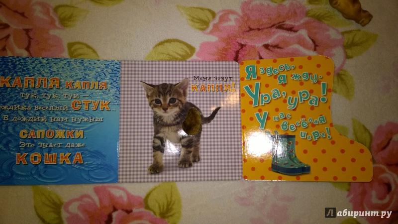 Иллюстрация 3 из 14 для Давай играть! Любопытные котята - Анжела Берлова | Лабиринт - книги. Источник: Солнышко Светка