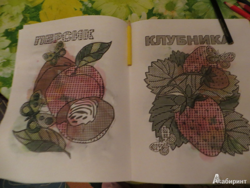 Иллюстрация 4 из 6 для Фруктовый сад. Раскрась водой   Лабиринт - книги. Источник: Ko-ren