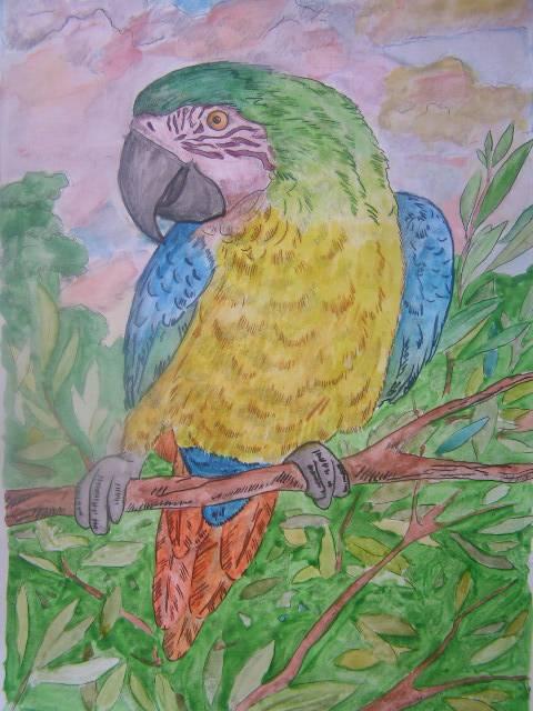 Иллюстрация 1 из 4 для Раскраска акварелью: Попугай (Рн022) | Лабиринт - игрушки. Источник: Люсия