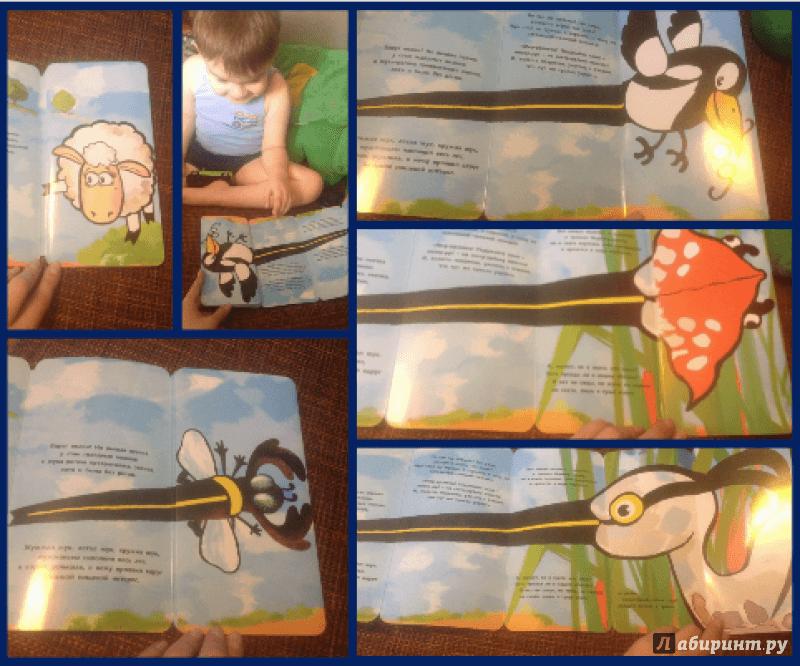 Иллюстрация 19 из 19 для Это овечка? - Петр Волцит | Лабиринт - книги. Источник: Сушко  Марина
