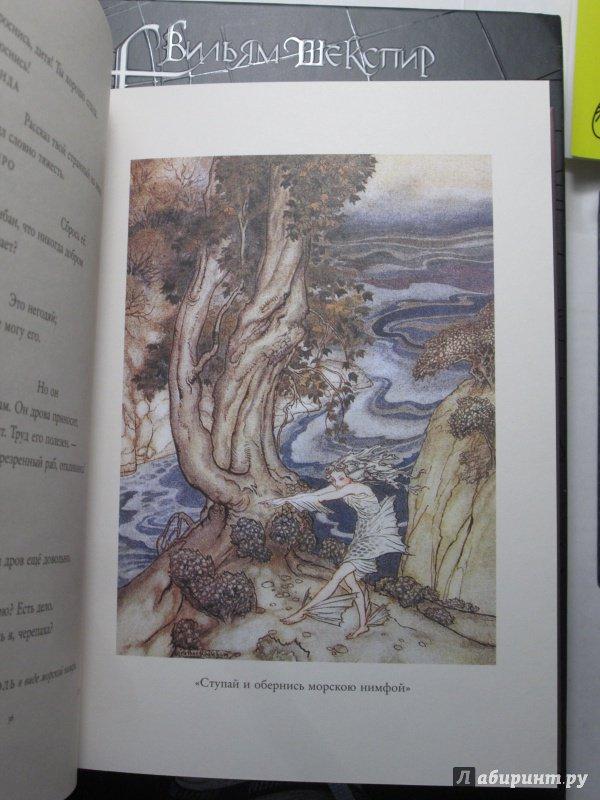 Иллюстрация 56 из 72 для Буря - Уильям Шекспир | Лабиринт - книги. Источник: bродяжник