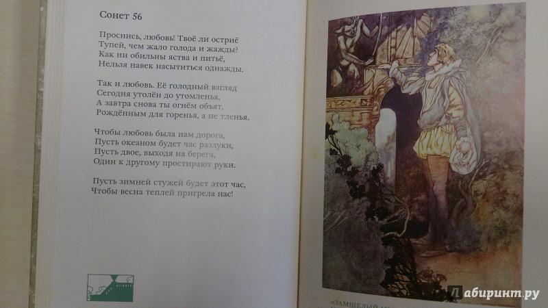 Иллюстрация 12 из 27 для Сонеты - Уильям Шекспир | Лабиринт - книги. Источник: Хвастунова Юлия