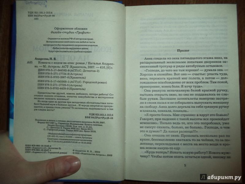 Иллюстрация 10 из 18 для Комната с видом на огни - Наталья Андреева | Лабиринт - книги. Источник: Kirill  Badulin