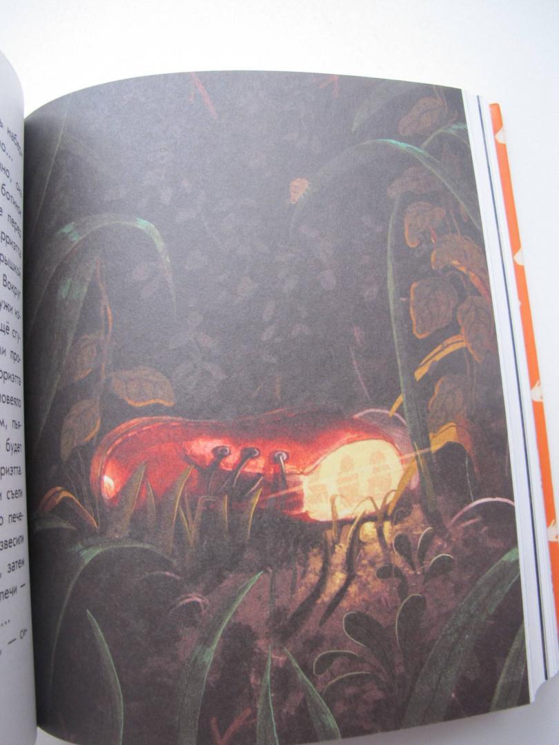 Иллюстрация 44 из 56 для Добывайки в поле - Мэри Нортон | Лабиринт - книги. Источник: Лагунова  Екатерина Сергеевна