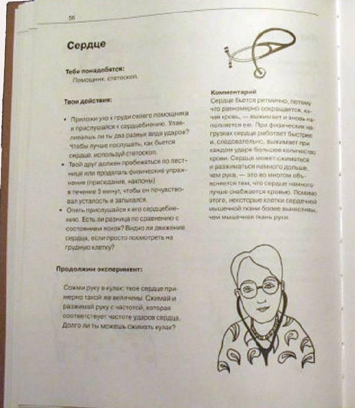 Иллюстрация 4 из 11 для Что умеет наше тело? - Фреск, Фреск | Лабиринт - книги. Источник: Кнопа2