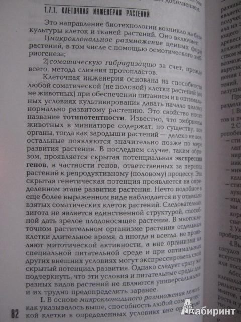 Иллюстрация 6 из 42 для Физиология растений. Учебник - Анатолий Веретенников | Лабиринт - книги. Источник: Евгения39