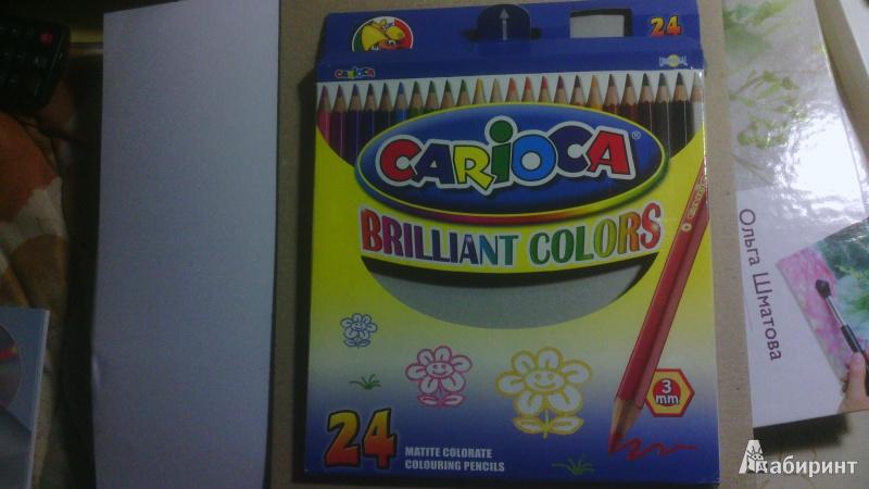Иллюстрация 1 из 3 для Карандаши 24 цвета Carioca (40381) + точилка | Лабиринт - канцтовы. Источник: val21