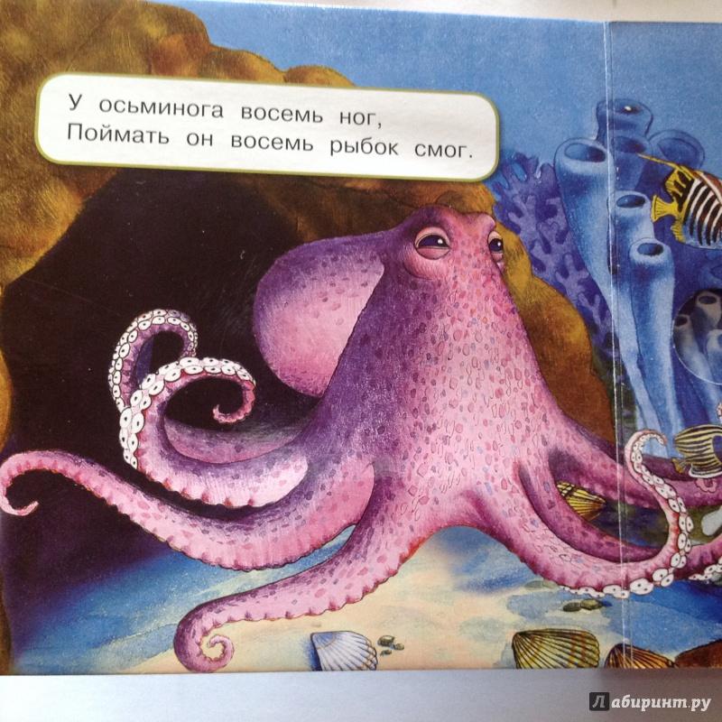 Иллюстрация 18 из 49 для Что у мишки на обед? - Юлия Шигарова | Лабиринт - книги. Источник: Sage Tea