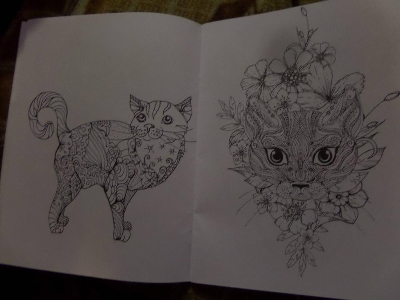 Иллюстрация 6 из 15 для Cats4. Творческая раскраска ...