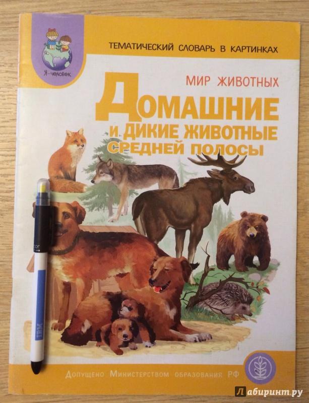 Тематический словарь в картинках мир животных дикие звери и птицы
