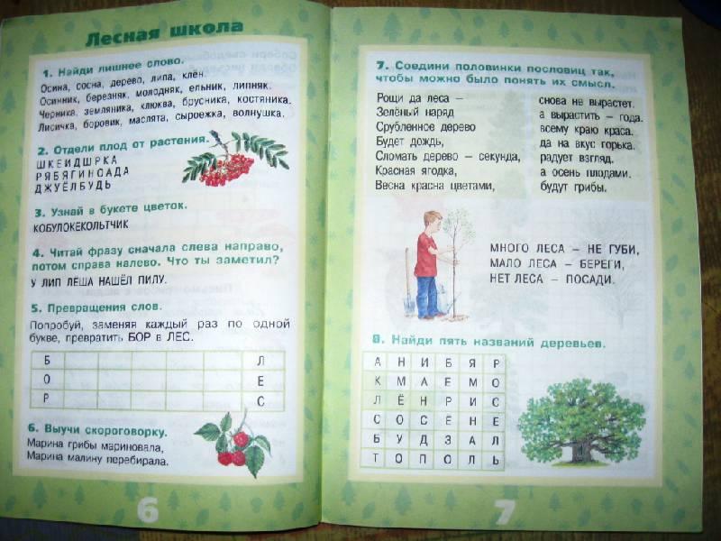 Иллюстрация 15 из 17 для Растения леса - Ольга Тишурина | Лабиринт - книги. Источник: Ирина Викторовна