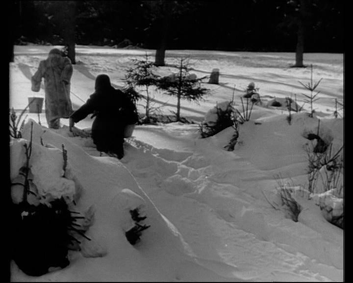 Иллюстрация 1 из 5 для Чук и Гек (DVD) - Иван Лукинский | Лабиринт - видео. Источник: knigoved