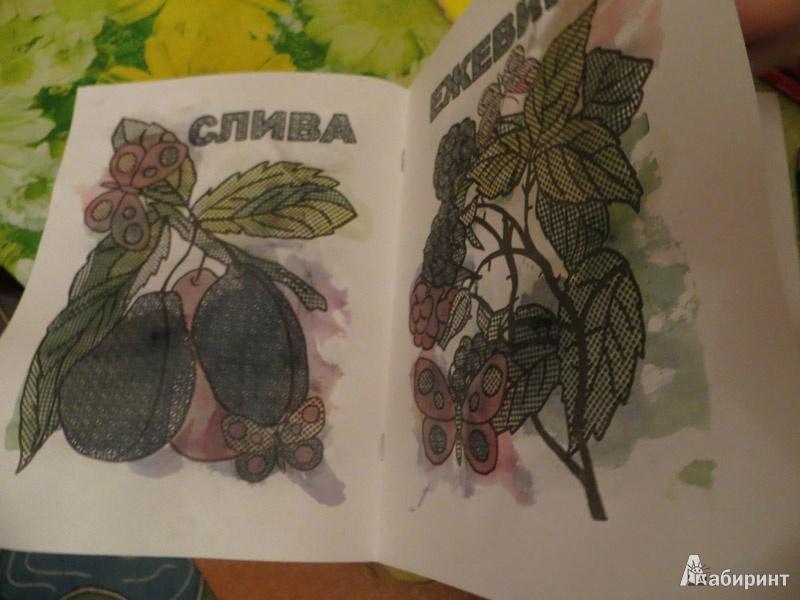 Иллюстрация 5 из 6 для Фруктовый сад. Раскрась водой   Лабиринт - книги. Источник: Ko-ren