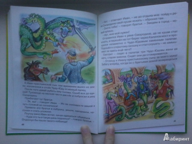 Иллюстрация 26 из 46 для Царевна-лягушка   Лабиринт - книги. Источник: Данилка