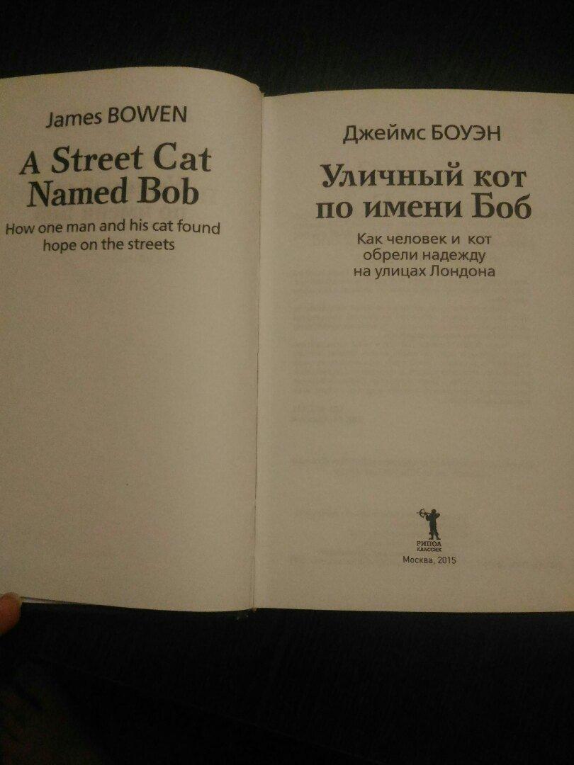 Иллюстрация 3 из 30 для Уличный кот по имени Боб. Как человек и кот обрели надежду на улицах Лондона - Джеймс Боуэн | Лабиринт - книги. Источник: Сидорова  Юлия Владимировна