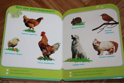 Иллюстрация 5 из 8 для Жизнь животных (от 3-х лет)   Лабиринт - книги. Источник: Vilvarin  Laurea