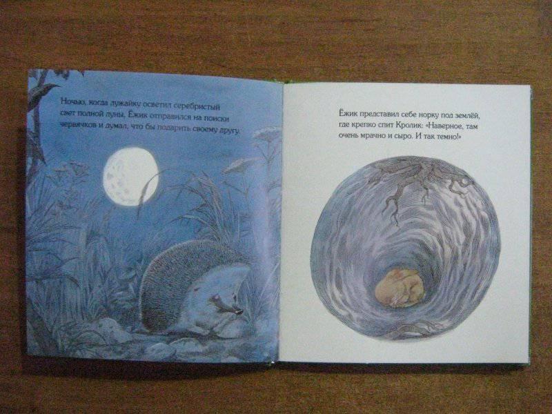 Иллюстрация 20 из 44 для Подарки в День рождения - Пол Стюарт | Лабиринт - книги. Источник: САР