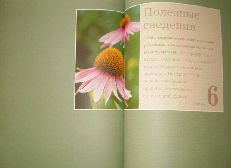 Иллюстрация 32 из 48 для Полезные советы из бабушкиной шкатулки   Лабиринт - книги. Источник: Ягодка