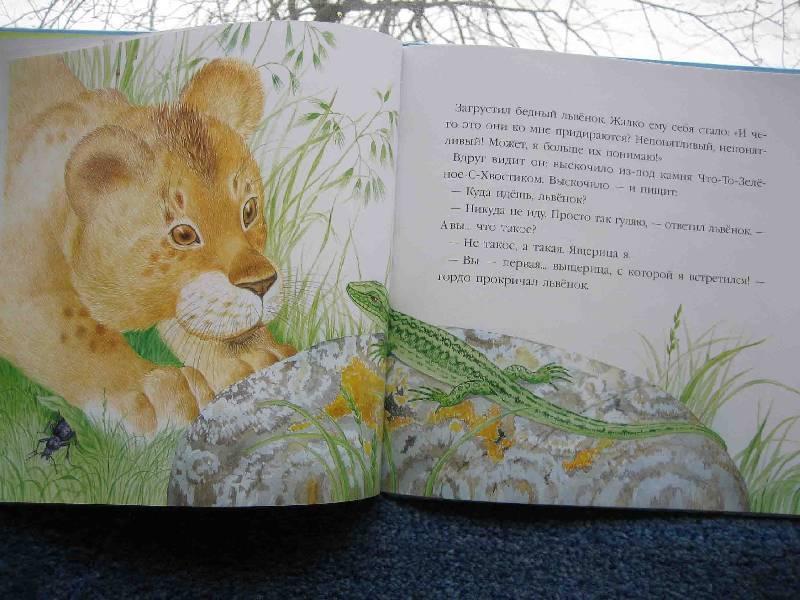 Иллюстрация 16 из 52 для В подарок малышу: Непонятливый львенок - Михаил Пляцковский   Лабиринт - книги. Источник: Трухина Ирина