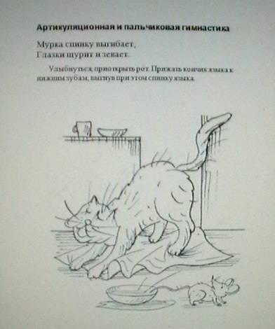 Иллюстрация 12 из 13 для Учимся говорить правильно за 20 минут в день. Уникальная система развития речи - Елена Анищенкова   Лабиринт - книги. Источник: ELVIRANIKA