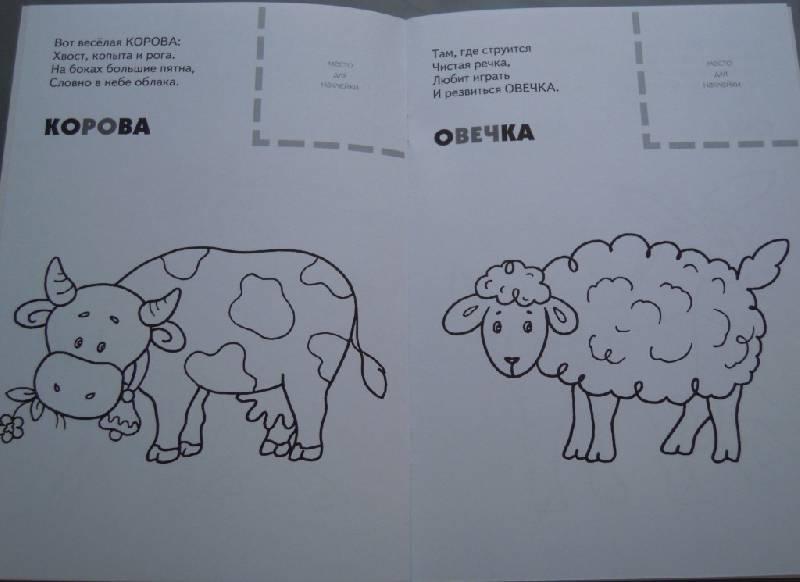 Иллюстрация 6 из 8 для Назови, раскрась, наклей: Домашние животные - Бурмистрова, Мороз   Лабиринт - книги. Источник: Iwolga