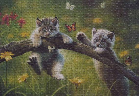 "Иллюстрация 3 из 3 для Пазл-500 ""Котята"" (13413) | Лабиринт - игрушки. Источник: ЛиС-а"