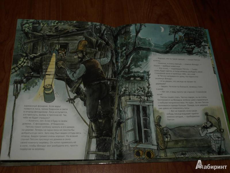 Иллюстрация 21 из 57 для Переполох в огороде - Свен Нурдквист | Лабиринт - книги. Источник: Гусева  Анна Сергеевна