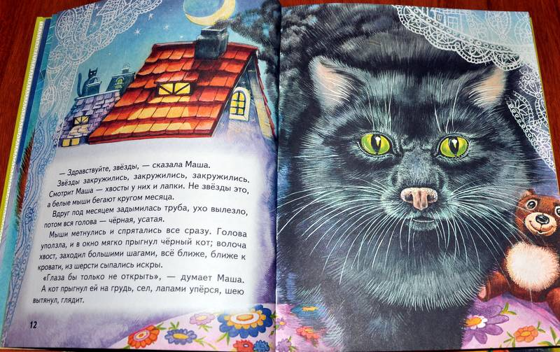сколько картинки сказки кота мурлыки аттракционы, тропический лес