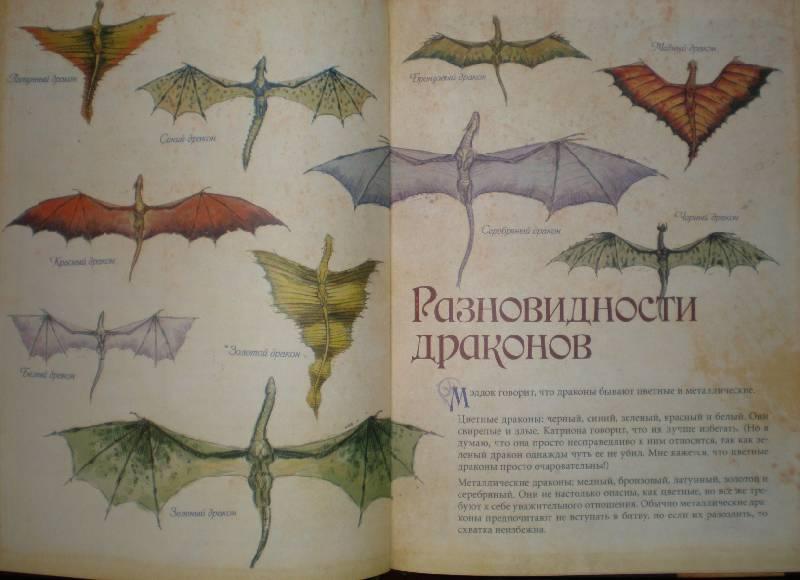 энциклопедия о драконах с картинками это может