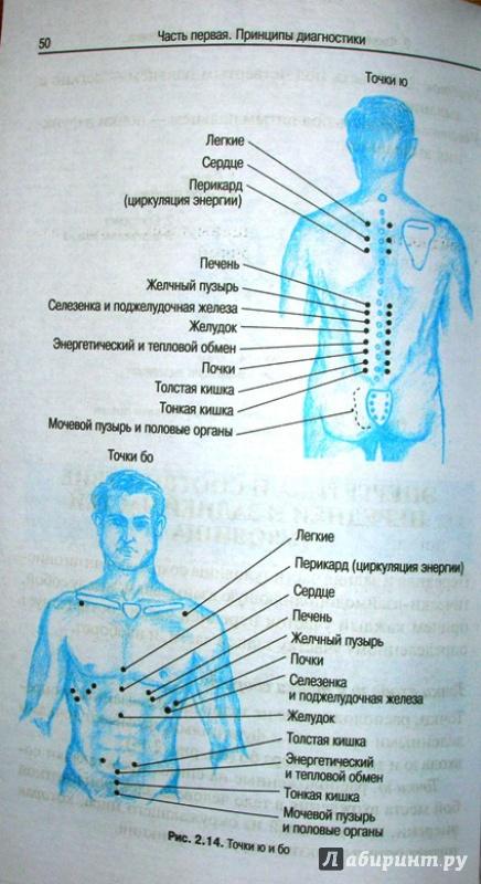Иллюстрация 8 из 16 для Руководство по восточной диагностике - Мишио Куши | Лабиринт - книги. Источник: Beloschka