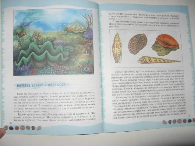 Иллюстрация 11 из 39 для Тайны морского дна: книга для чтения детям - Геннадий Целищев | Лабиринт - книги. Источник: varta