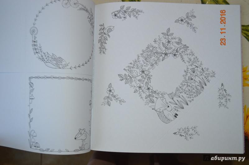 Открытки-раскраски с конвертами и наклейками на все праздники, гусеница ползет прозрачном