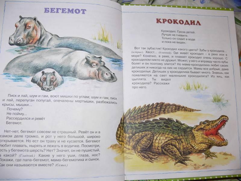 Иллюстрация 13 из 20 для О диких и домашних животных. 2-4 года | Лабиринт - книги. Источник: Irbis