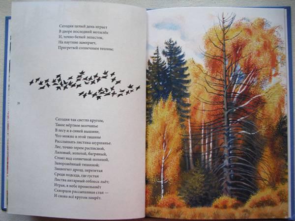 Картинки стихи никитенко