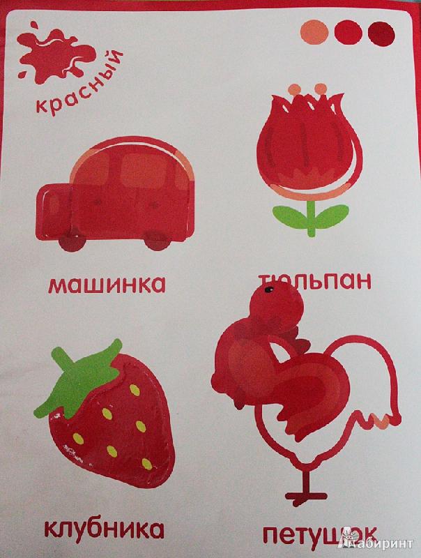 Иллюстрация 1 из 31 для Цветные картинки. Чудесные наклейки   Лабиринт - книги. Источник: Анна Р.