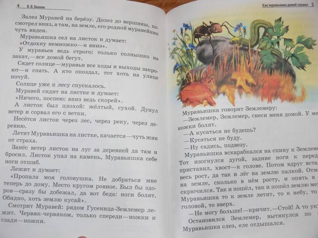 Иллюстрация 15 из 19 для Лесные домишки - Виталий Бианки   Лабиринт - книги. Источник: Irbis