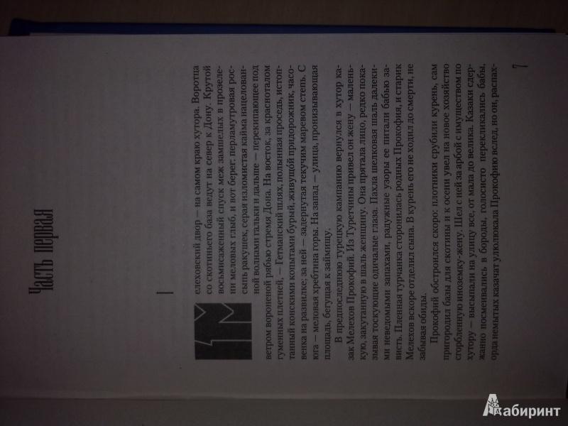 Иллюстрация 17 из 61 для Тихий Дон. В 2-х томах. Том 1 - Михаил Шолохов   Лабиринт - книги. Источник: Яппарова  Анжела Димовна