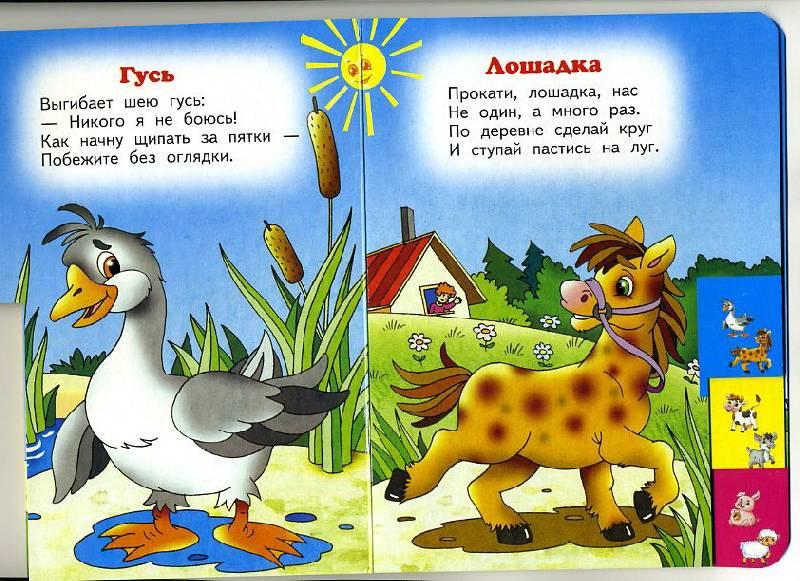 стихи с картинками про животных жмете кнопку