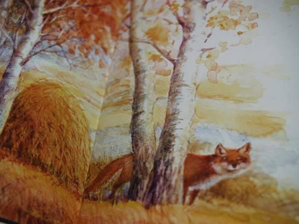Коты воители рисунки в паинте картинки другой